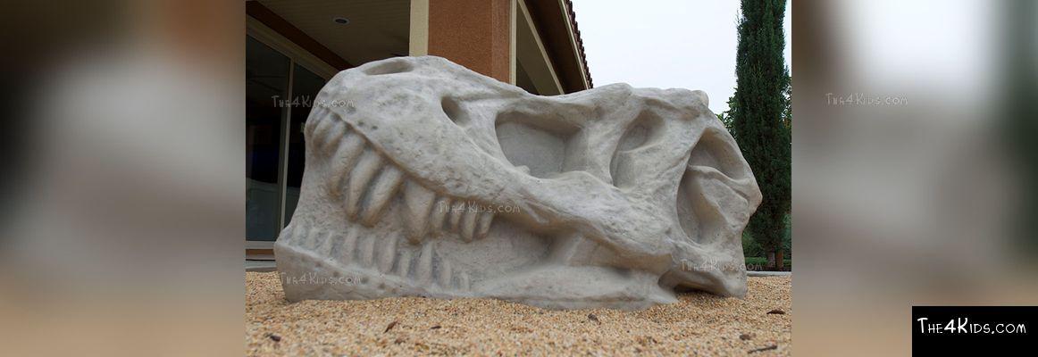 Canyon Hills T-Rex Climber Project 4