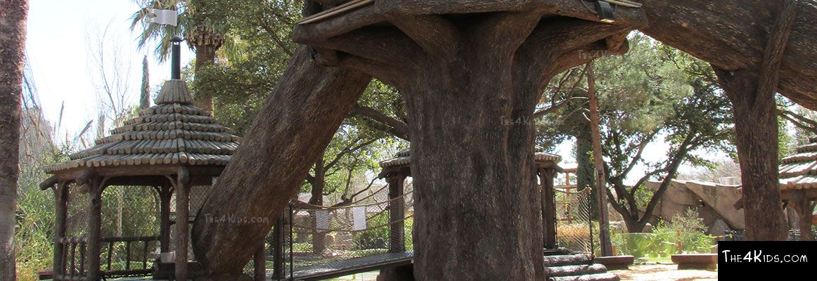 El Paso Zoo, Foster Tree House - Texas Project 12