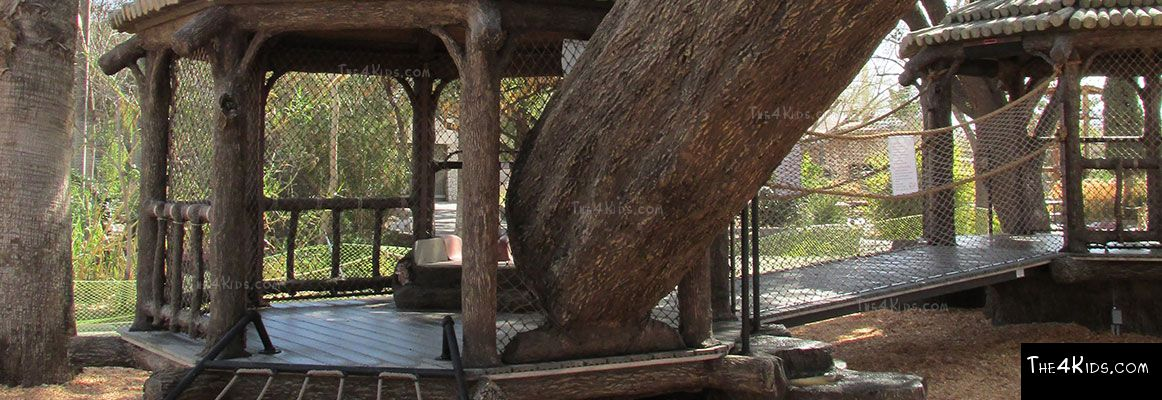 El Paso Zoo, Foster Tree House - Texas Project 14