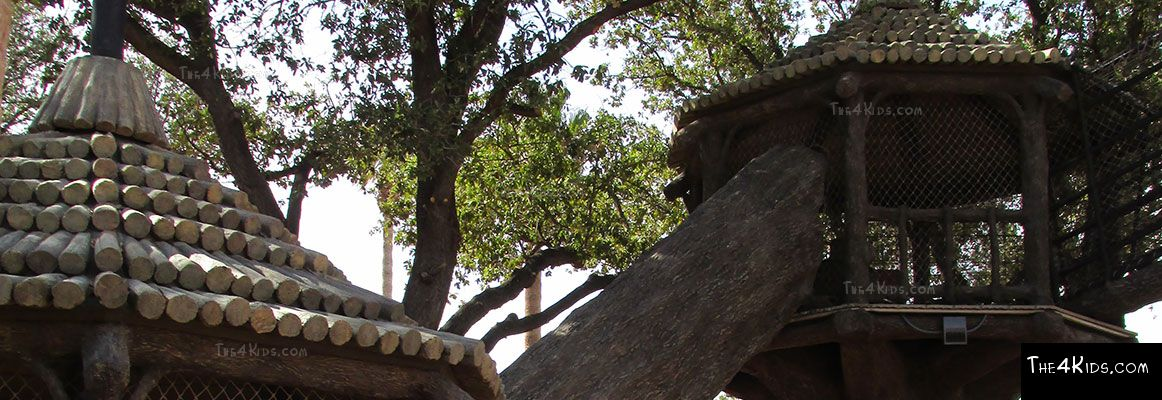 El Paso Zoo, Foster Tree House - Texas Project 17