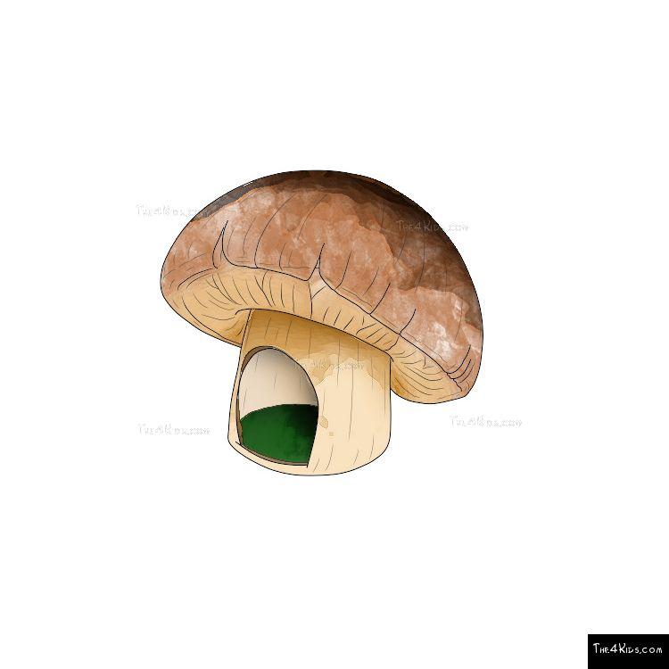 Image of Mushroom Hut