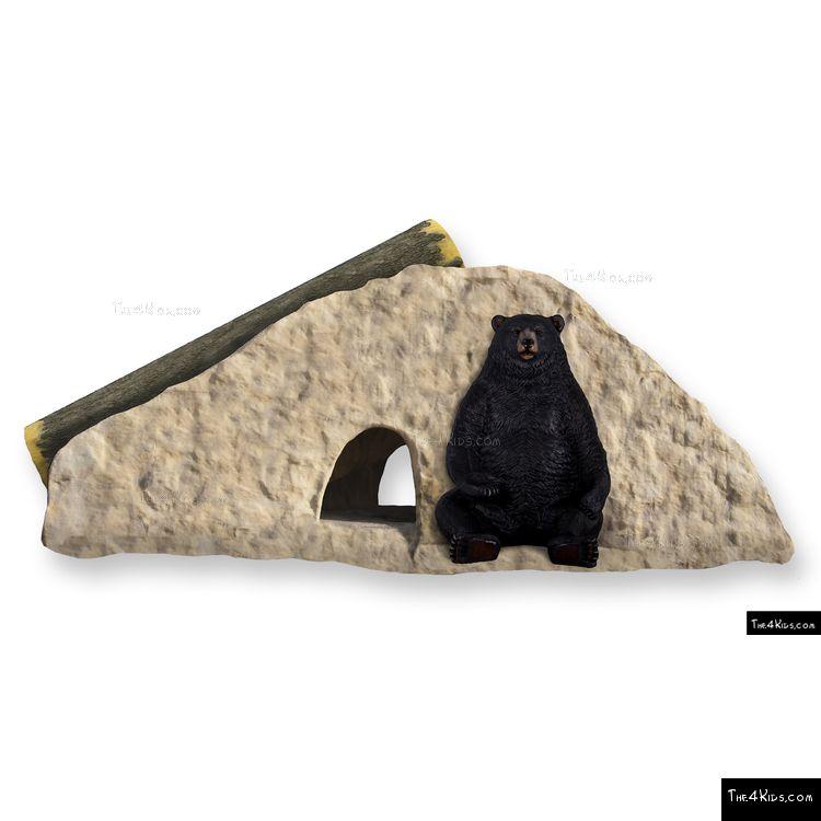 Image of Bear Climb N Slide
