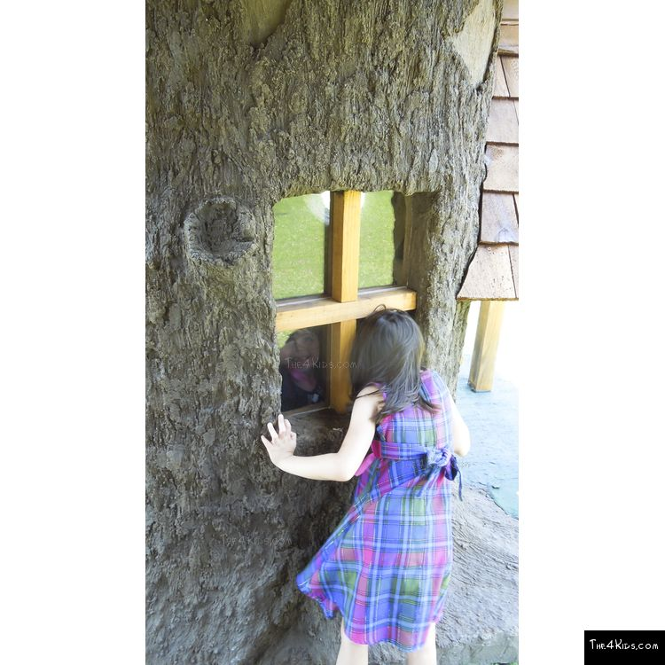 Image of Tree and Playhouse Windows