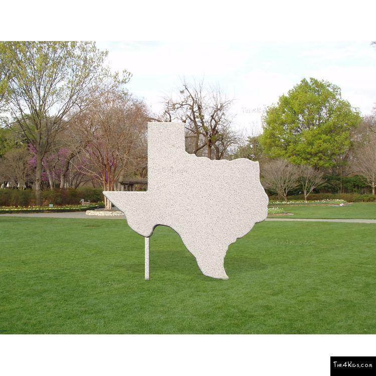 Image of Texas Cutout