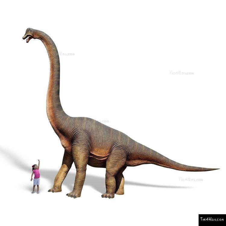 Image of Brachiosaurus