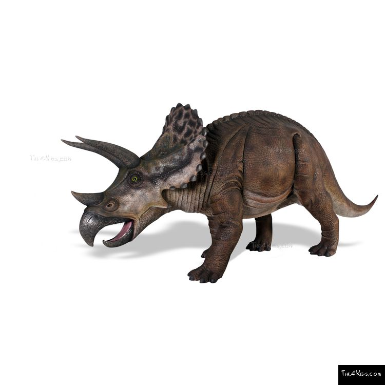 Image of Triceratops Sculpture