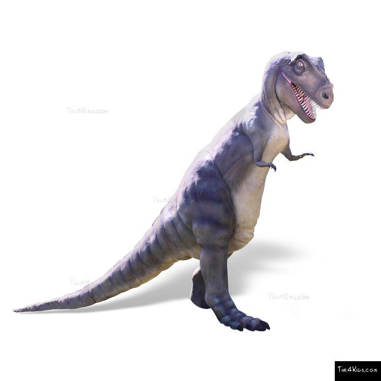 Image of 11ft Tyrannosaurus Rex