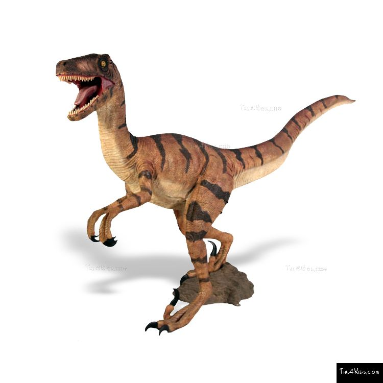 Image of Velociraptor Sculpture