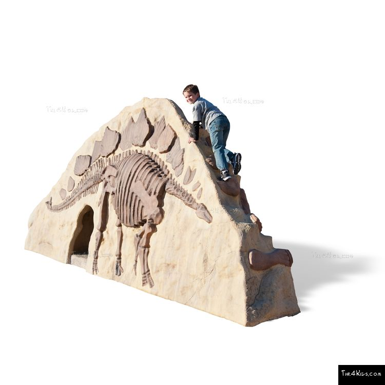 Image of Dino Rock Climb N Slide