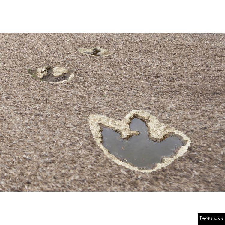 Image of Dino Tracks