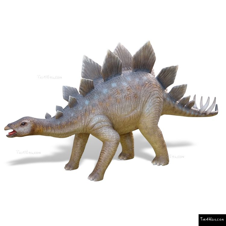 Image of Young Stegosaurus