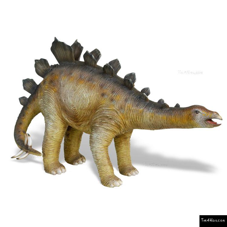 Image of Baby Stegosaurus