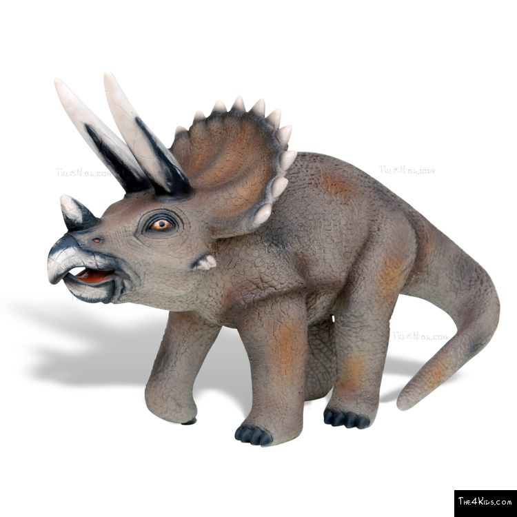 Image of Baby Triceratops