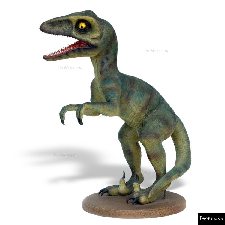 Image of Baby Deinonychus