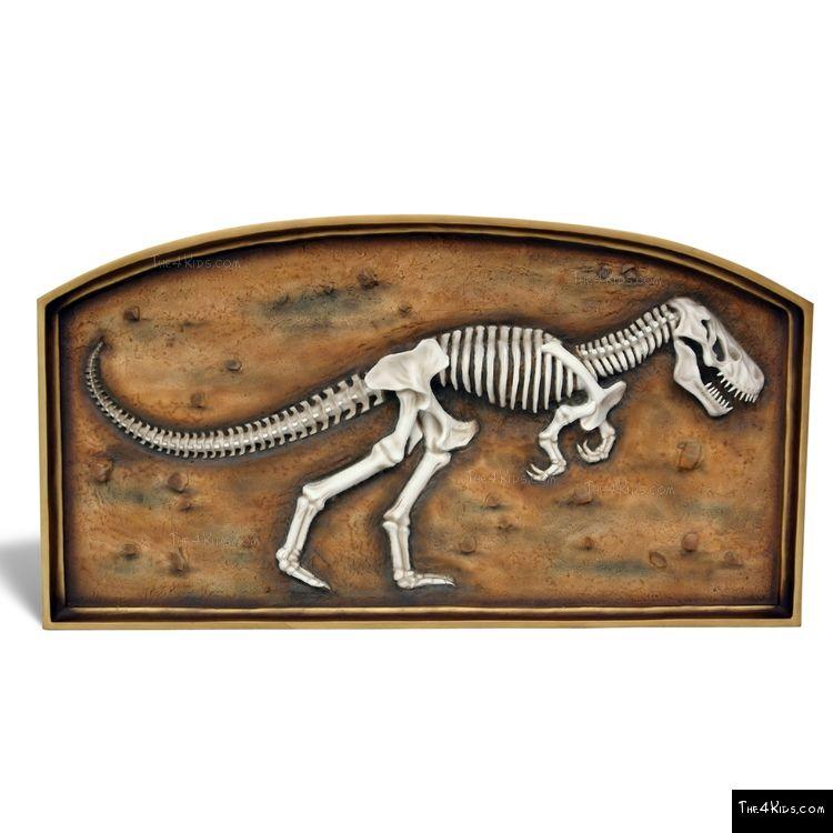 Image of Framed T-Rex Skeleton