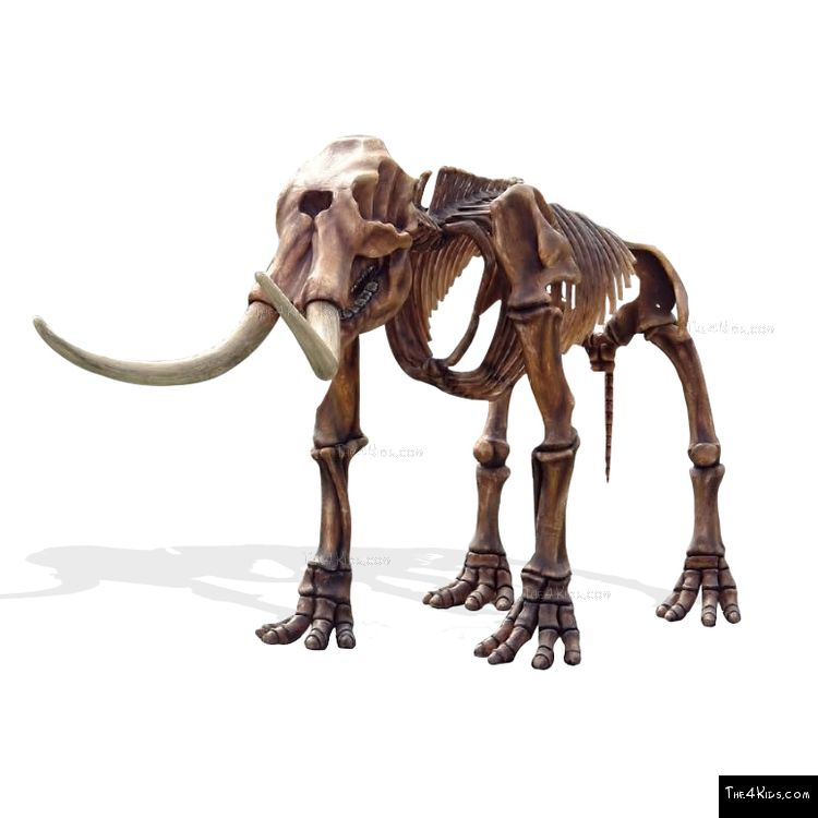 Image of Mastodon Skeleton Sculpture