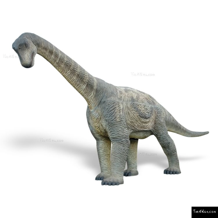 Image of Camarasaurus Sculpture