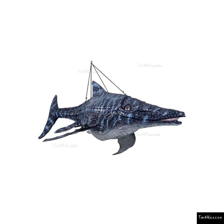 Image of Ichthyosaur