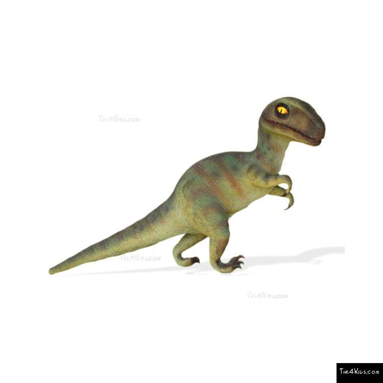 Image of Baby T-Rex
