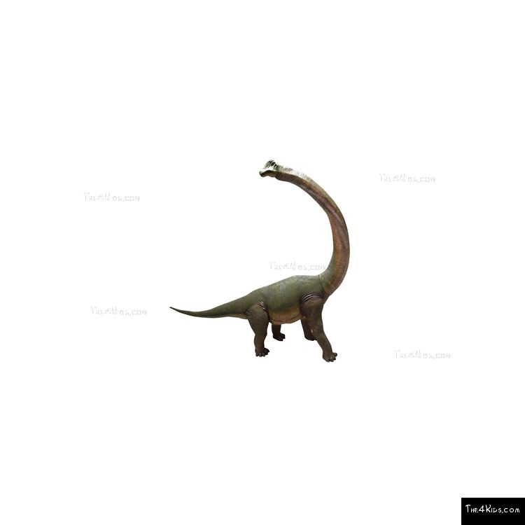 Image of Brachiosaurus with Twisted Neck