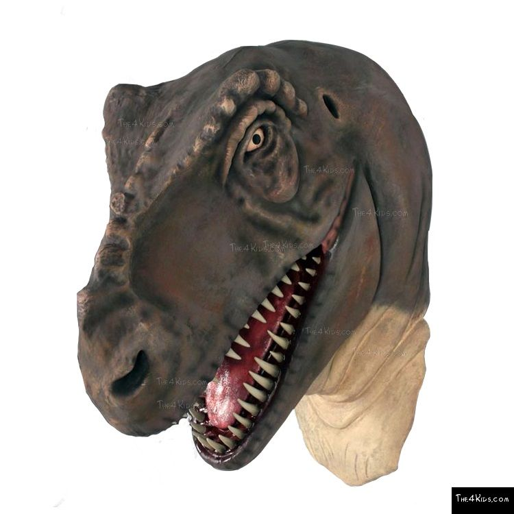 Image of T-Rex Head Jumbo