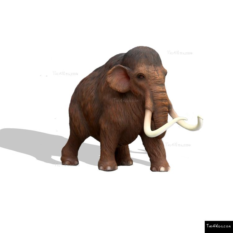 Image of 1.5ft Baby Mammoth