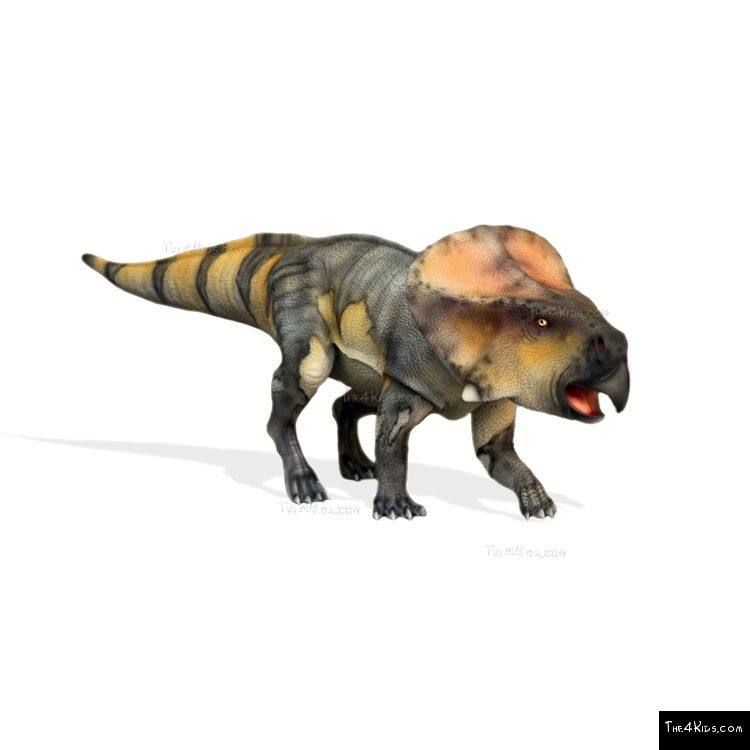 Image of Baby Protoceratops Sculpture