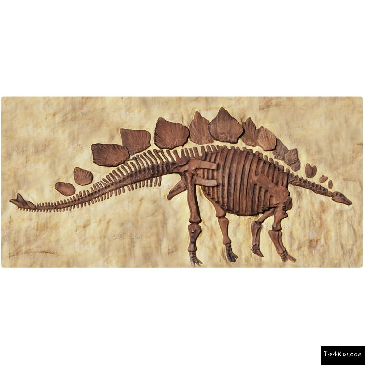 Image of Stegosaurus Panel
