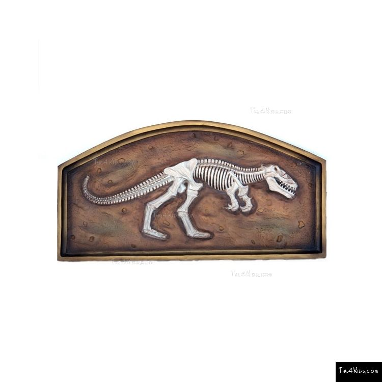 Image of 3ft T-Rex Fossil in Frame