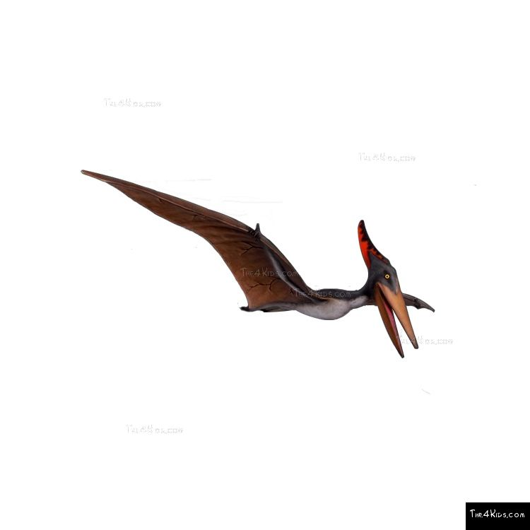 Image of 10ft Pteranodon Sculpture