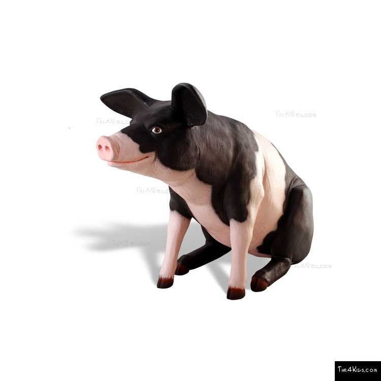 Image of Farm Pig
