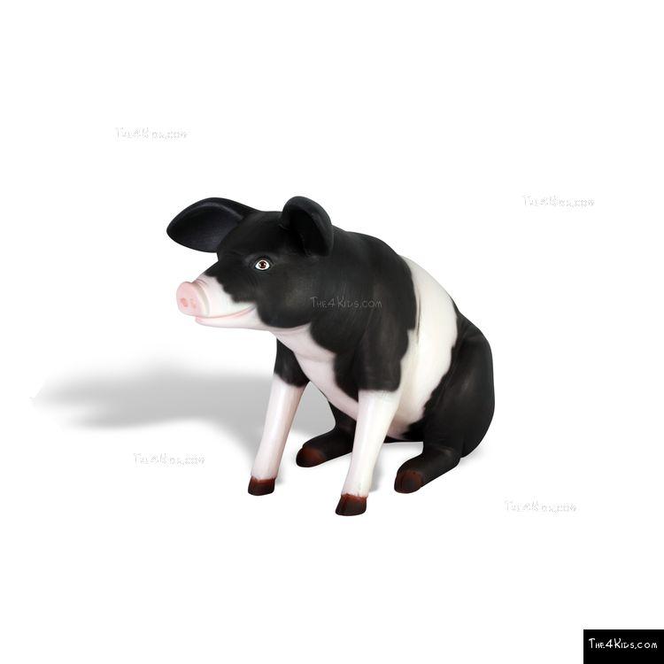 Image of Farm Piglet