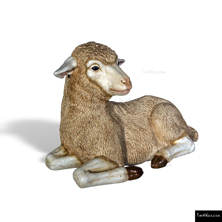 Image of Merino Lamb Lying Down