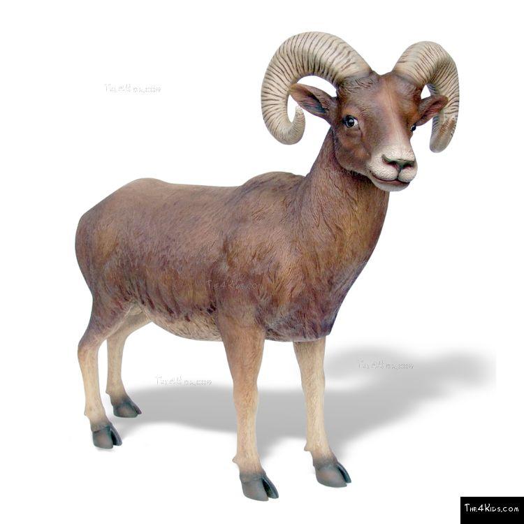 Image of Big Horn Sheep