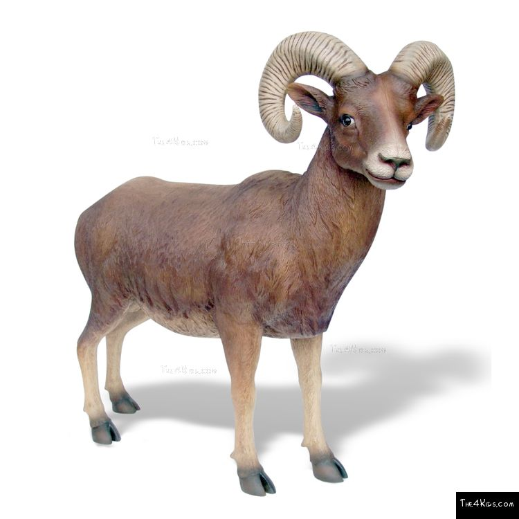 Image of Big Horn Sheep Sculpture