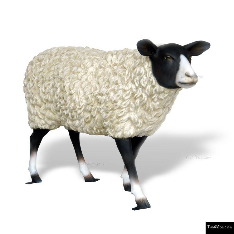 Image of Suffolk Sheep