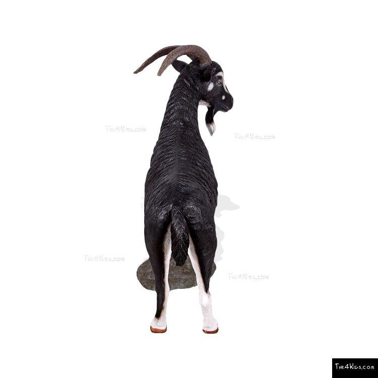 Image of Mountain Goat White
