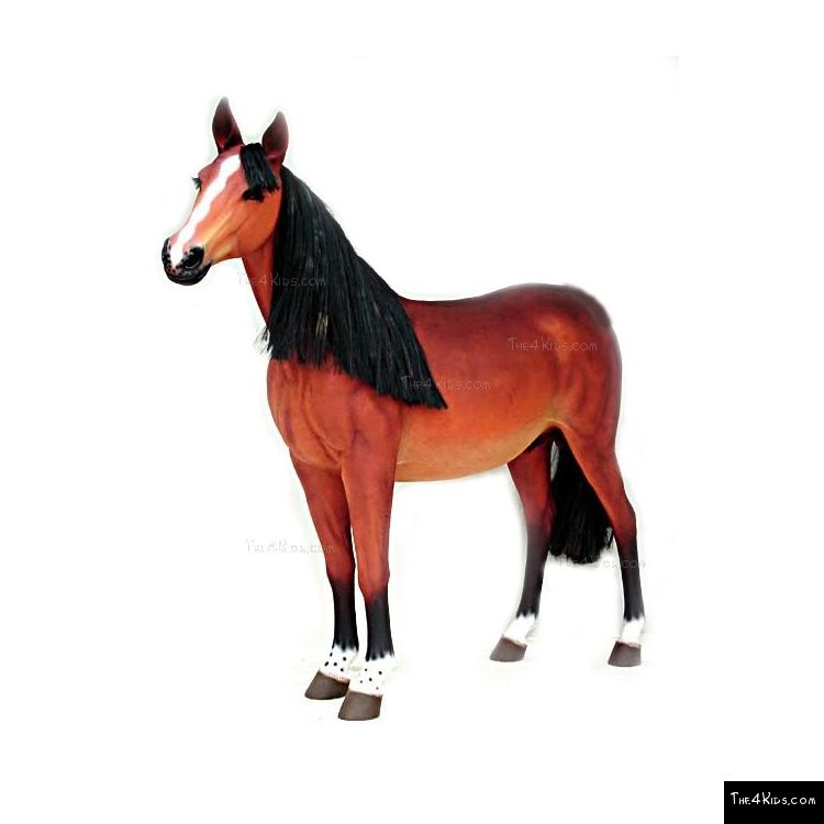 Image of Quarter Horse
