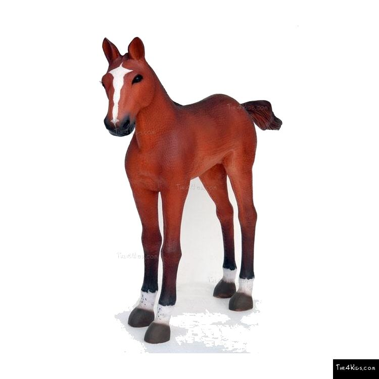 Image of Quarter Horse Foal 1