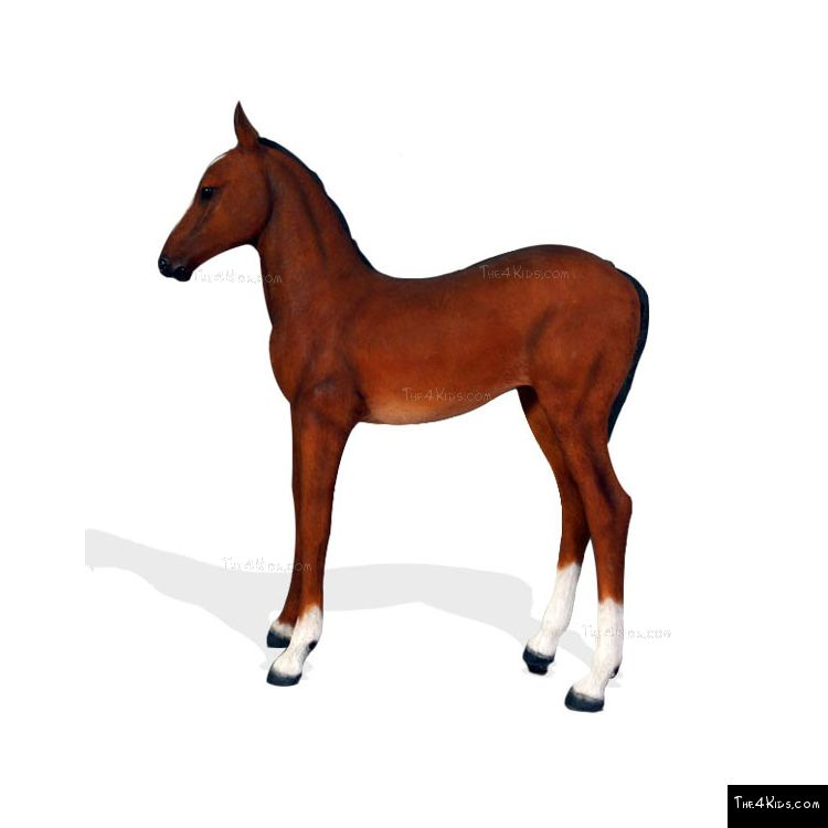 Image of Quarter Horse Foal 2
