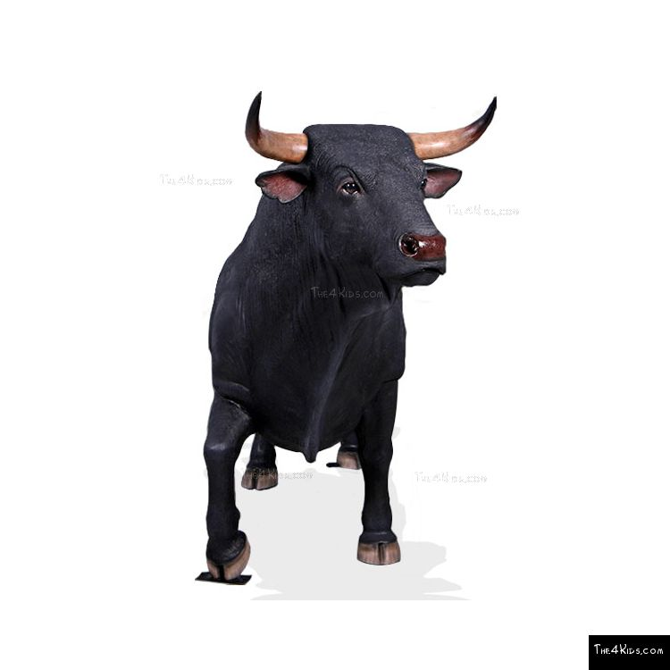 Image of Spanish Fighting Bull