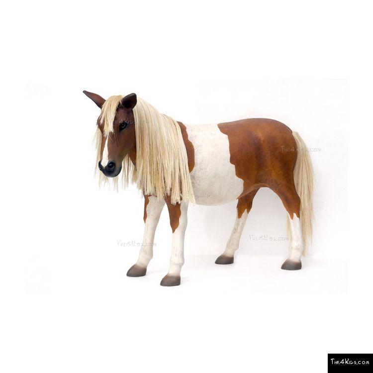 Image of Shetland Pony