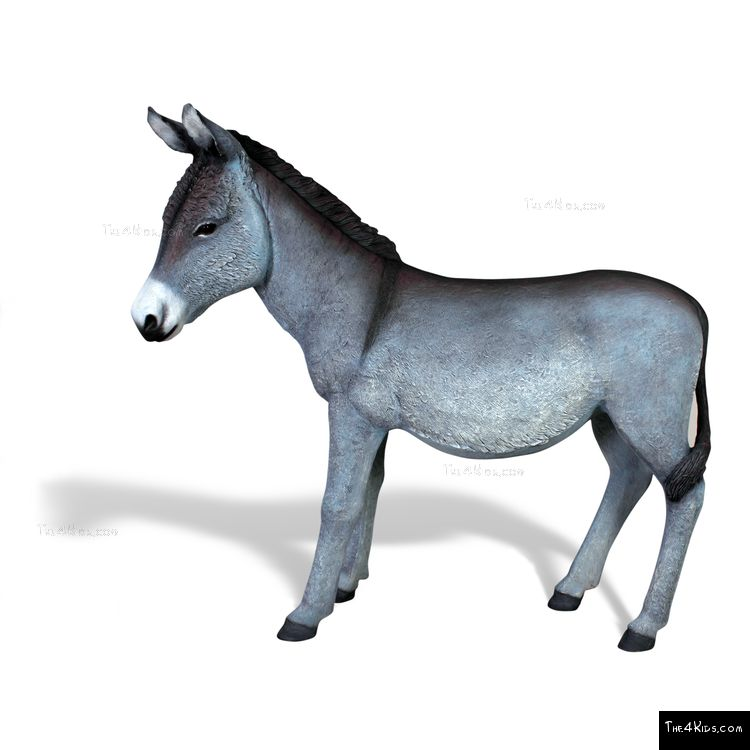 Image of Donkey