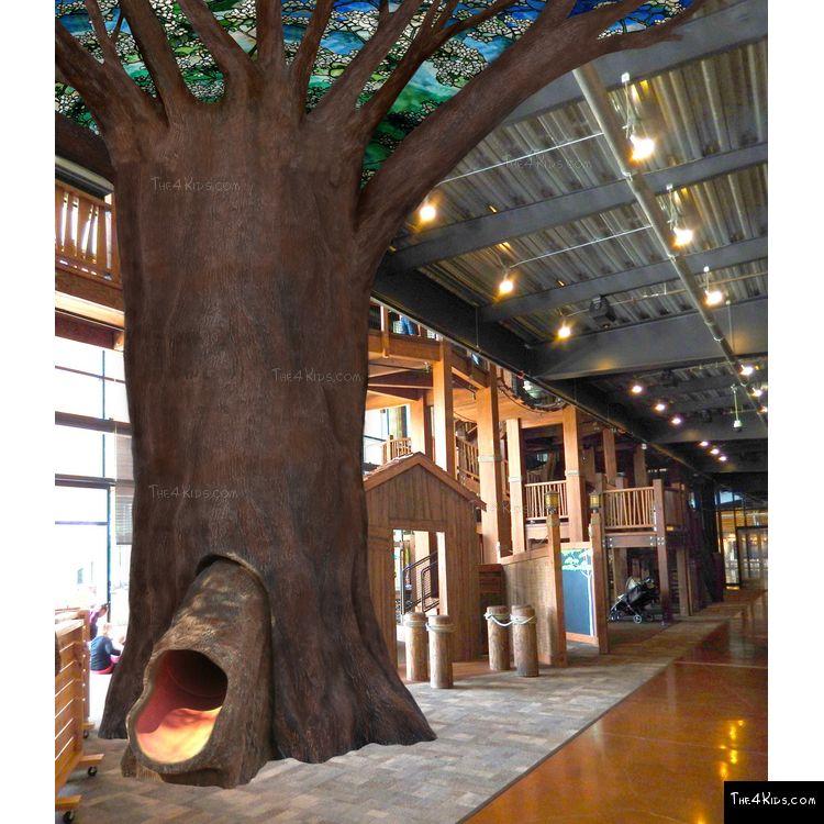Image of Tree Trunk Slide