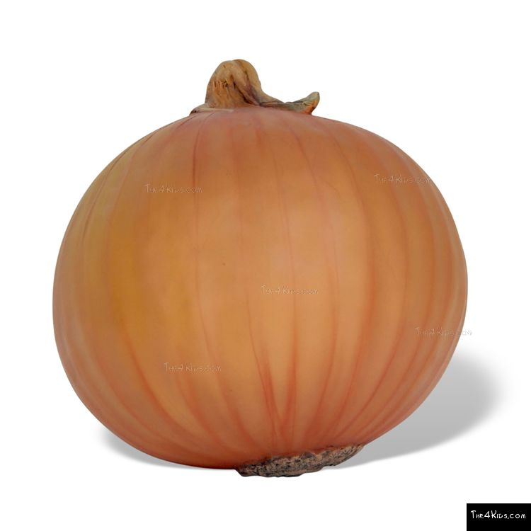 Image of Onion Sculpture