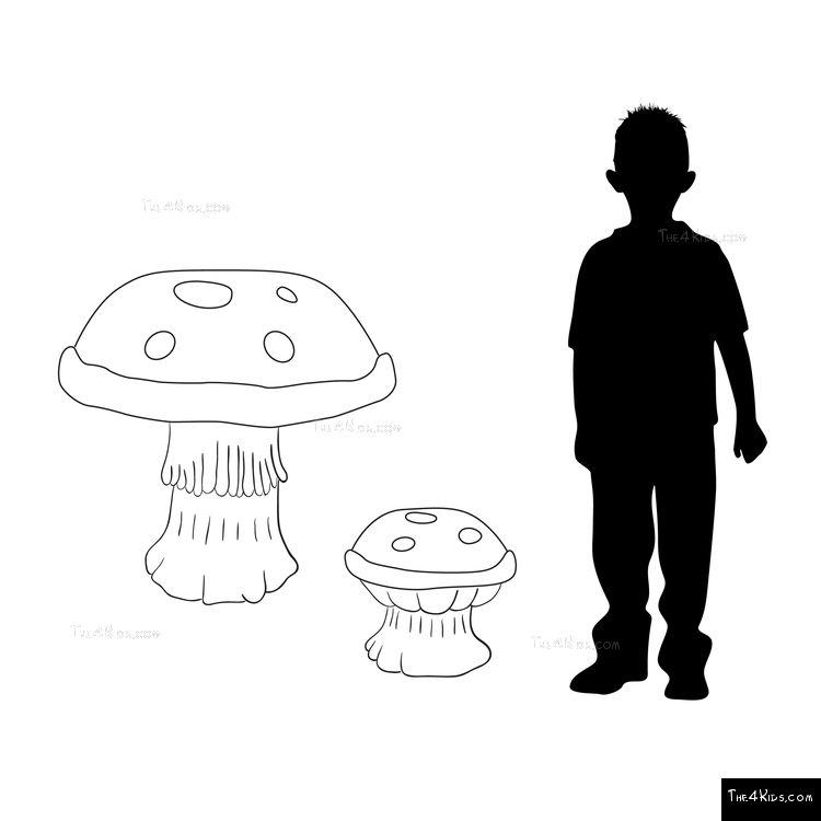 Image of Mushroom Climber