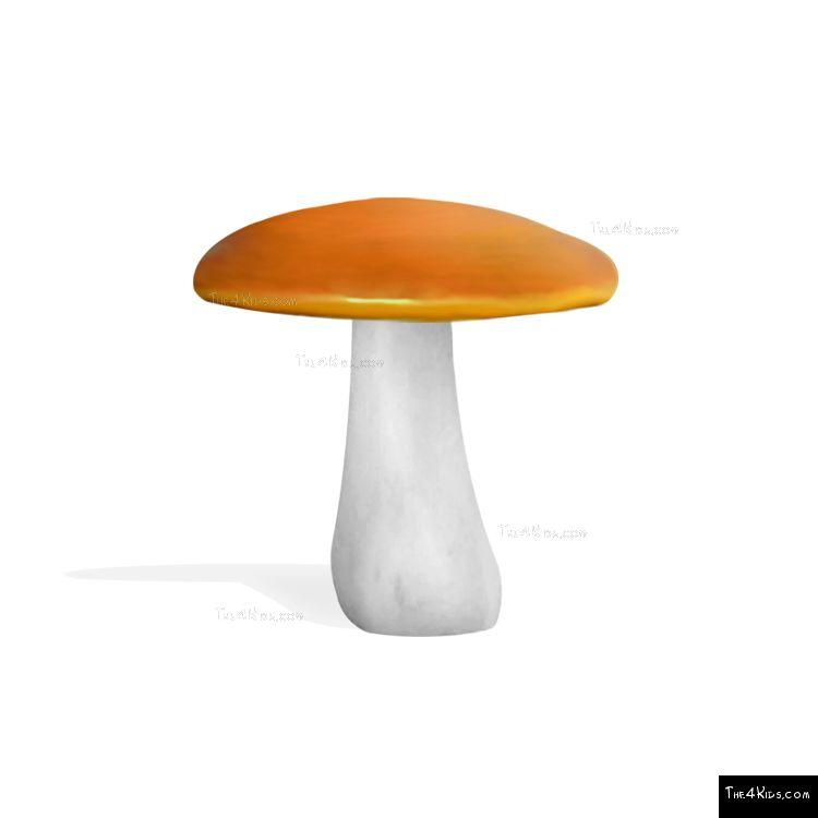 Image of Mushroom Cluster