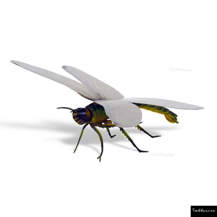 Image of Giant Dragonfly Sculpture