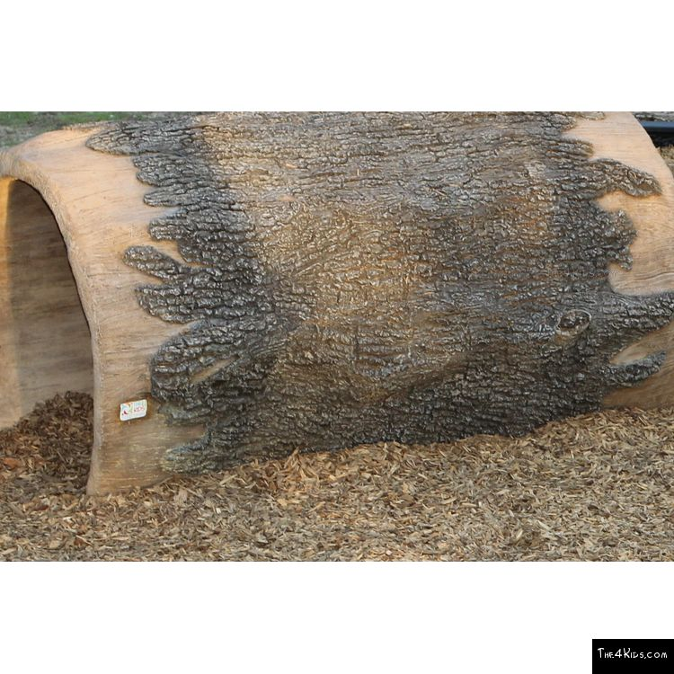 Image of Log Climber and Slide