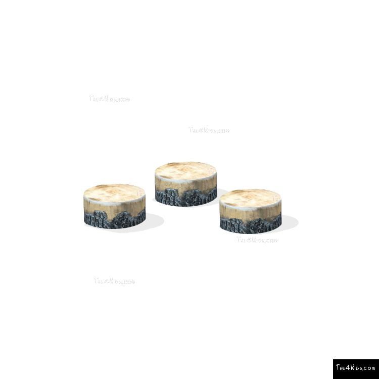 Image of Log Slices
